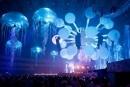 Sensation: объявлен полный лайн-ап фестиваля