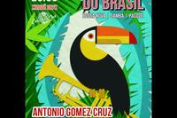 Концерт Ritmo do Brasil