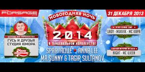 Новогодняя ночь 2014 в танцевальном королевстве