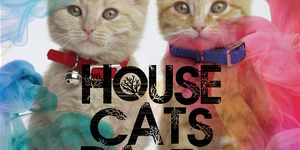 HOUSE CATS PARTY